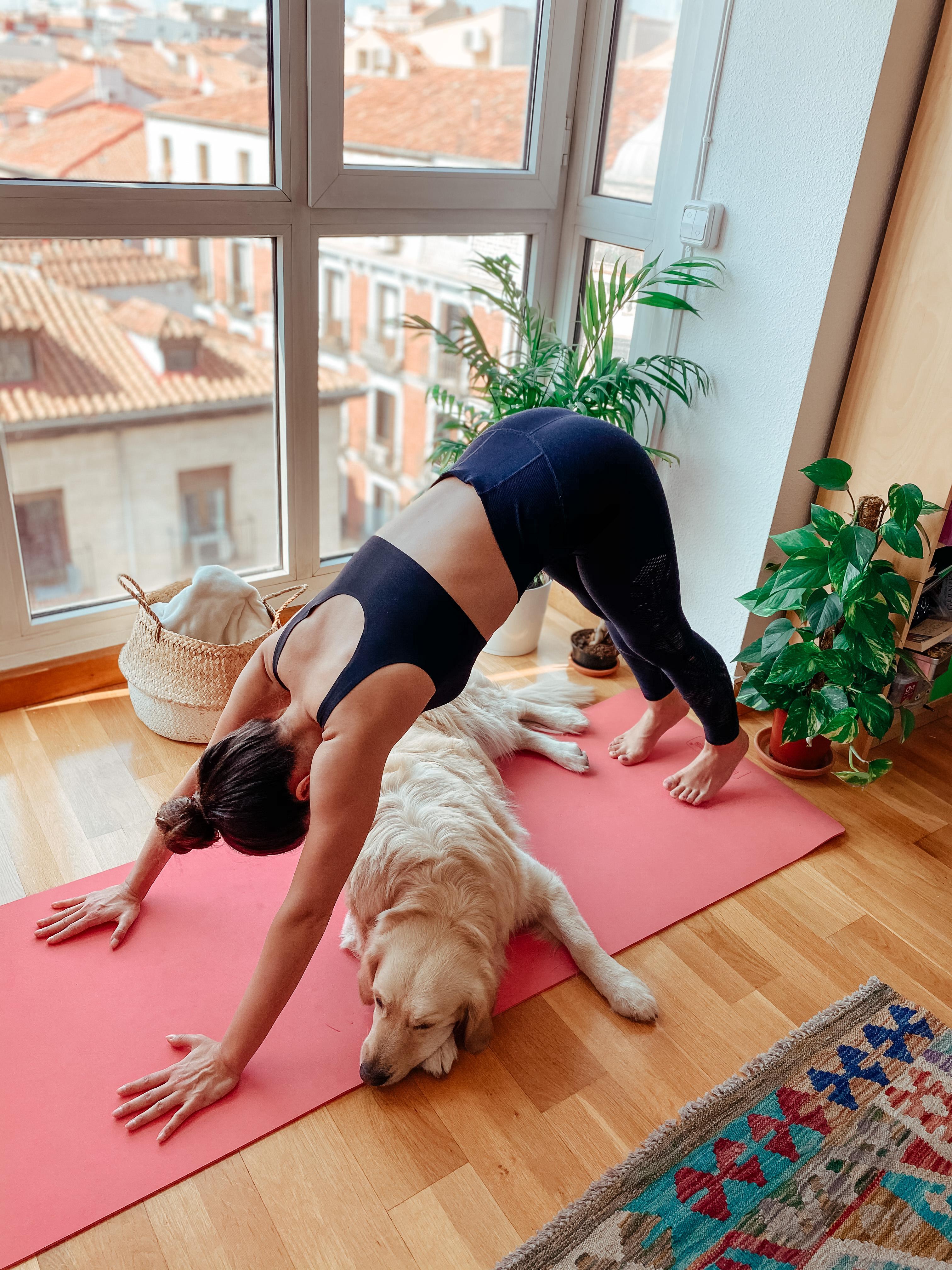 alba y claire x sisen yoga